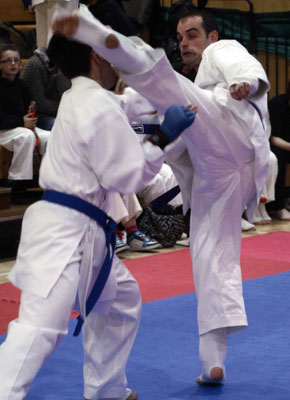 National All-Styles British Karate Championship